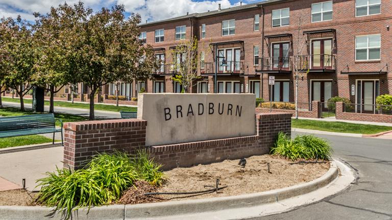 Bradburn_thum